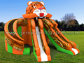 GS-218 Giant Tiger slide