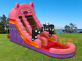 GWS-10 Farm water slide
