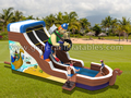 GWS-120 Pirate water slide