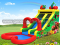 GWS-157 Fruits water slide