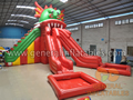 GWS-197 Dragon slide with pool