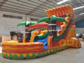 GWS-5 Water slide with pool