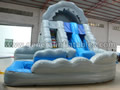 GWS-66 Dual Lane Water Slide
